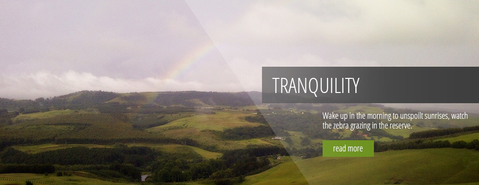 Tanquility - Wake up in the morning to unspoilt sunrises, watch the zebra grazing in the reserve.